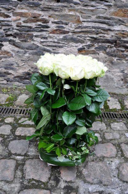 fagot de roses